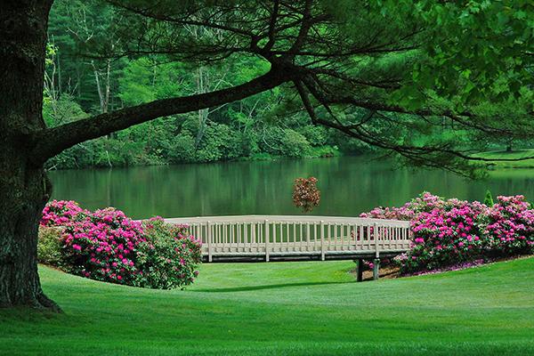 Chetola Lake