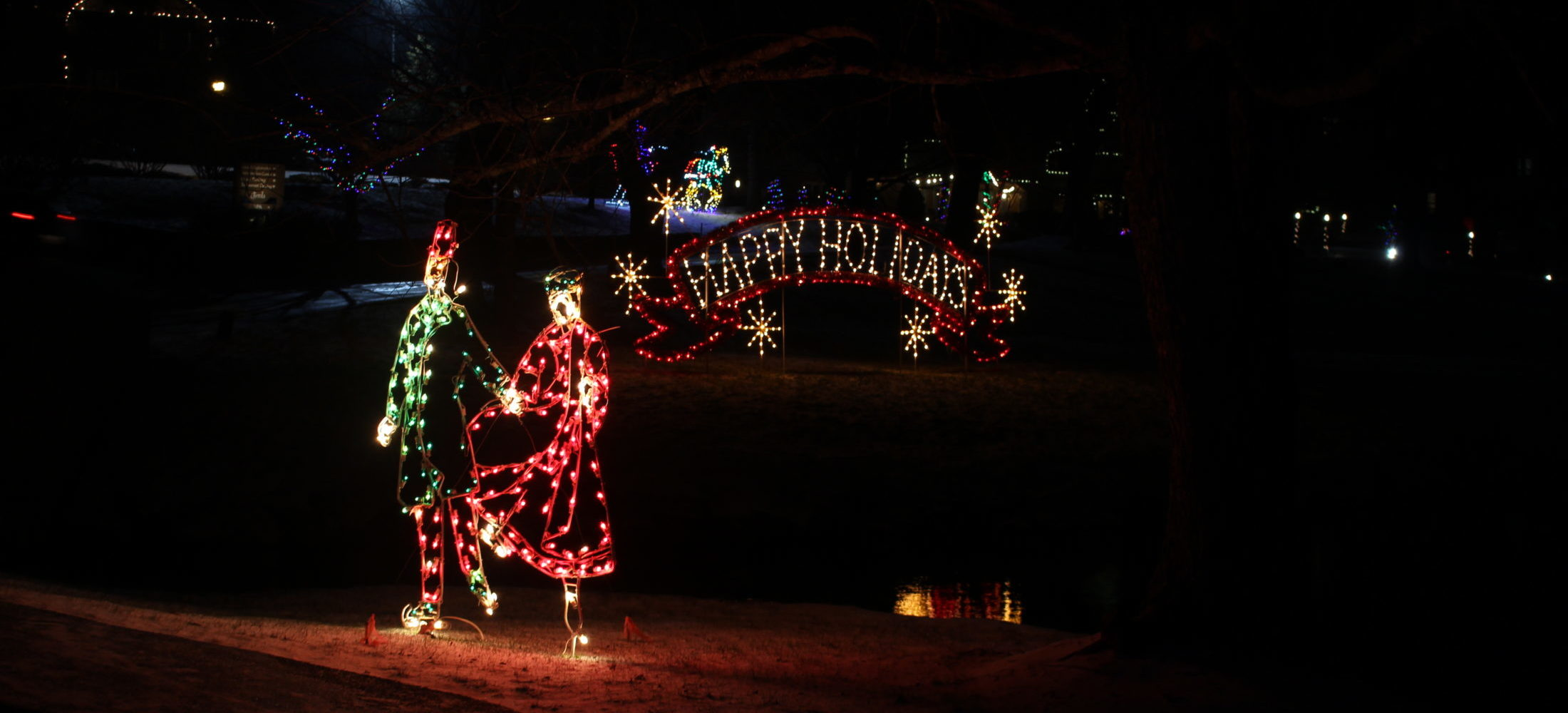 Holiday Lights shaped as a couple.
