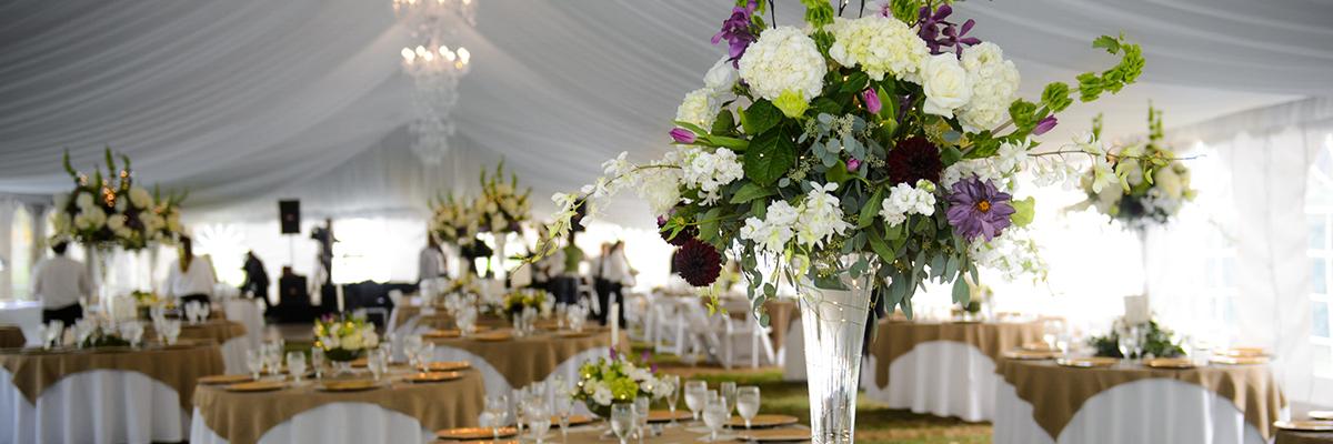 chetola weddings reception
