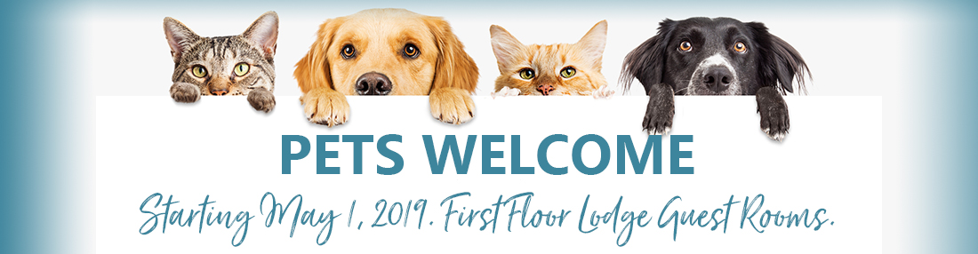 pets welcome starting may 1
