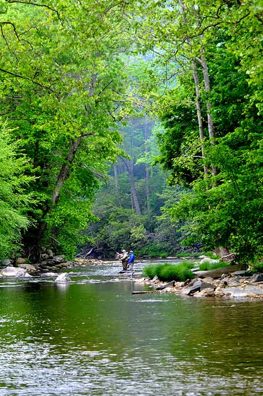 chetola resort at blowing rock fly fishing