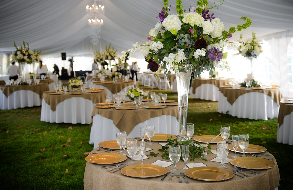 Wedding reception locations chetola resort at blowing rock for Local venues for weddings